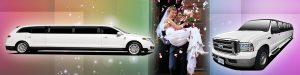 Chicago Wedding Limo Packages